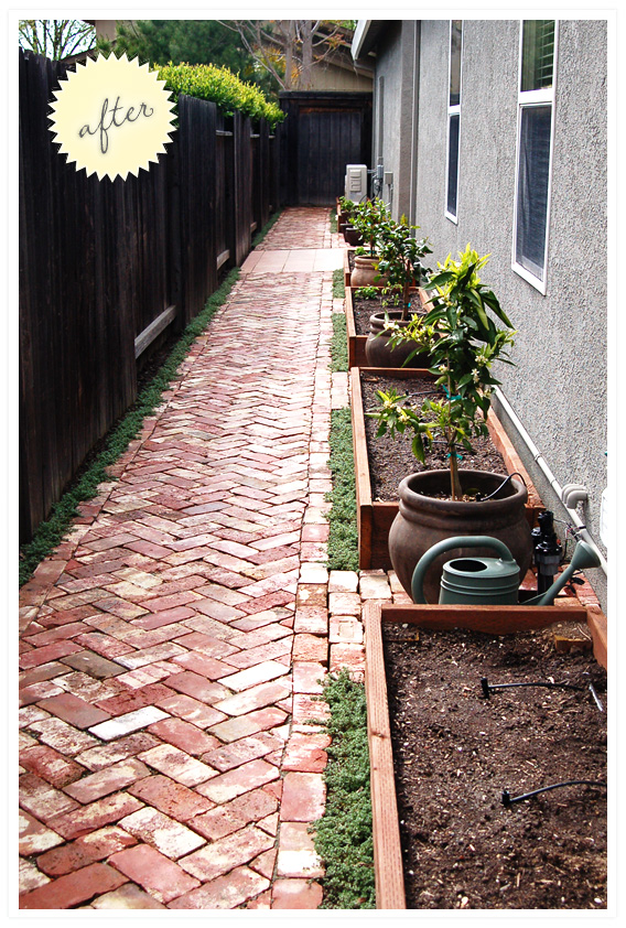 side yard: gravel to garden. | Wild Ink Press on Small Walkway Ideas id=33439